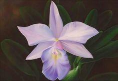 Óleo sobre tela - Orquídea