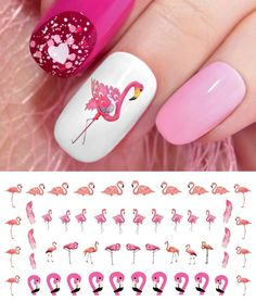 Flamingo Nail Art Waterslide Decals - Salon Quality! | Health & Beauty, Nail Care, Manicure & Pedicure, Nail Art Accessories | eBay!