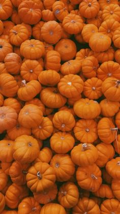 Holiday Wallpaper, Halloween Wallpaper, Cool Wallpaper, Iphone Wallpaper, Orange Aesthetic, Orange You Glad, Pretty Wallpapers, Fall Photos, My Favorite Color