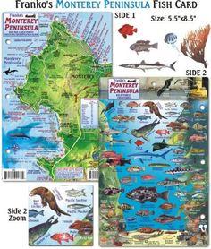 Franko Maps Monterey Peninsula Fish ID for Scuba Divers and Snorkelers, Multi