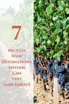 7 No-Fuss Wine Destinations Anyone Can Visit (and Enjoy!) | Perfect Vacations For Wine Lovers | Next Vacation Inspiration