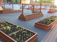 Outdoor Garden Classrooms