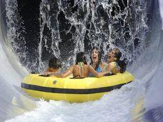 Adventure Island | Visit St Petersburg Clearwater Florida