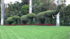 Słonie cięte z roślin Bonsai, Golf Courses, Park, Parks, String Garden