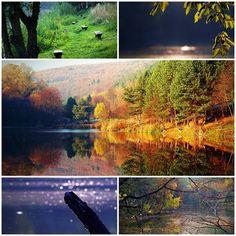 Szivárványtánc – Fotókon az ősz kincsei | Életszépítők