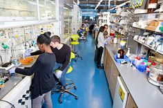 home chemistry lab - Google Search
