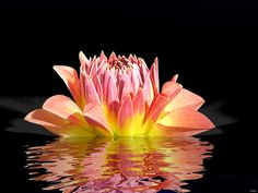 Reflection-In-Water-Wallpapers-14