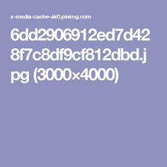 6dd2906912ed7d428f7c8df9cf812dbd.jpg (3000×4000)