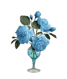 Beautiful Flowers Images, All Flowers, Flower Images, Flower Art, Lovely Good Night, Gifs, Good Morning Flowers, Gif Pictures, Kurdistan