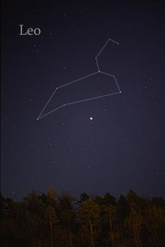 Constellation Leo (and other constellation descriptions)