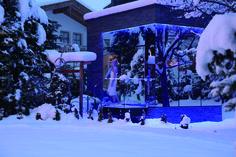 Entspanntes Saunieren & danach erfrischende Abkühlung im Schnee :) Wellness, Concert, Snow, Recital, Concerts, Festivals