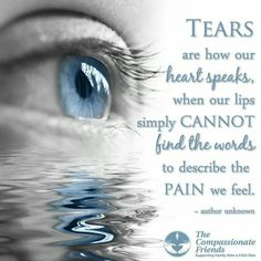 Tears are how our heart speaks, when our lips simply cannot find the words to describe the pain we feel. -author unknown The Compassionate Friends Missing My Son, Losing A Loved One, The Words, Loss Quotes, Me Quotes, Qoutes, Angel Quotes, Quotes Images, Quotable Quotes