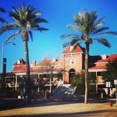 University of Arizona in Tucson, AZ - the site for our spectacularly spooky 5k & relay race through the University of Arizona campus.