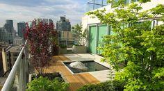 diseño terraza con estanque moderno