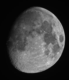 The gibbous Moon appears between First Quarter and Full Moon and between Full Moon and Last Quarter.