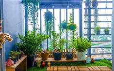 7 Ideas to Make your Terrace a Walk in Paradise! Home Office, Terrace, Paradise, Design Inspiration, Make It Yourself, How To Make, House, Drama, Outdoors