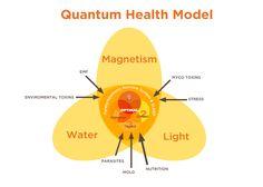QuantumHealthModel
