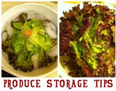 Produce Storage Tips