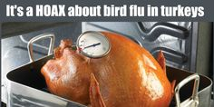It's a hoax if you heard a story about bird flu in turkeys - more at http://www.snopes.com/media/notnews/turkeyflu.asp plus a call to USDA Meat & Poultry Hotline also confirmed this! So ... Have a Happy #Turkeyday!