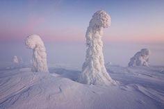 Bilderesultat for alien landscapes on earth