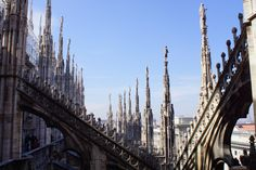 Duomo Milano Sculpture Rows by Uwe Kalms on 500px