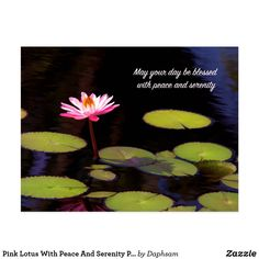 Pink Lotus With Peace And Serenity Postcard #lotus #greetingcard #peace #zazzle