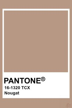 Beige Color Palette, Colour Pallete, Colour Schemes, Beige Colour, Pantone Swatches, Color Swatches, Pantone Colour Palettes, Pantone Color, Brown Pantone