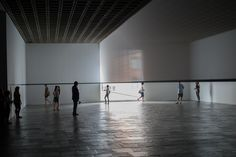 Robert Irwin Scrim Veil Black Rectangle Natural Light Whitney 2013 - Robert Irwin (artist)
