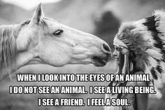 When I look into the eyes of an animal I do not see an animal | Anonymous ART of Revolution