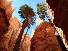 Best Places to Cool Off This Summer Sunset Point, Bryce Canyon, Heaven On Earth, Day Tours, Monument Valley, Utah, Sunrise, Beautiful Places, Road Trip
