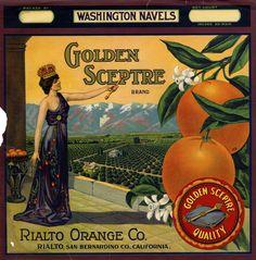Golden Sceptre Brand Orange crate label