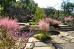 Wispy Grasses: Soft and Ornamental