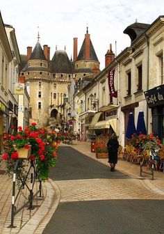 Langeais - Touraine, Loire Valley ~ France, one of my favorite castles in the Loire Valley; the town is great too Belle France, France 3, Bordeaux France, Places Around The World, Travel Around The World, Around The Worlds, Places To Travel, Places To See, Travel Destinations