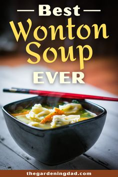 Is there anything better than hot wonton soup on a cool fall evening? Learn how to make the BEST Wonton Soup Ever with this simple, quick, and cheap recipe! #wonton #soup #recipe