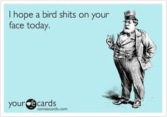 i hope a bird shits on your face today!!! and you can step in dog shit while your at it! hahahahaha