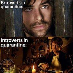The 26 Funniest 'Lord of the Rings' Memes About Coronavirus Legolas, Thranduil, Tolkien, Hobbit Funny, O Hobbit, Hobbit Humor, Gollum Smeagol, Gollum Meme, How To Pixel Art