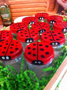 Ladybug Bug Catchers - made from baby food jars, for 1st birthday party.