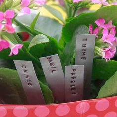 Simple Plant Markers. $12.00, via Etsy.