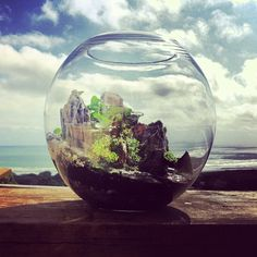 Light/Dark World - Terrarium by bioattic