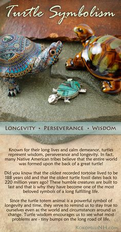 The Turtle is a Native American symbol of wisdom, perseverance, creation and a long life.