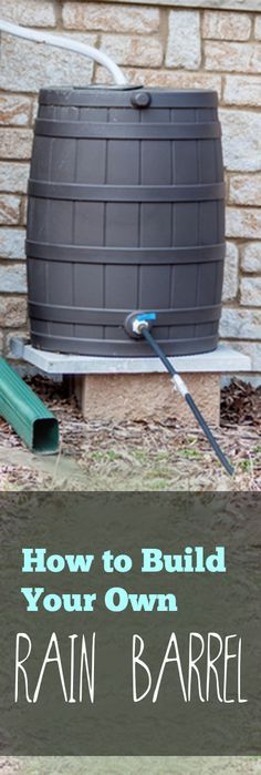 How to Build Your Own Rain Barrel- DIY Rain Barrel Tips, tricks and tutorials.