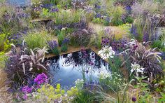 Five RHS Hampton Court Palace Flower Show garden looks to try at home The One Show garden RHS Hampton Court Palace Flower Show texture garden sunken garden with dark pools Hampton Court Flower Show, Rhs Hampton Court, Flower Garden Design, Small Garden Design, Chelsea Flower Show, Sensory Garden, Sunken Garden, Colorful Garden, Purple Garden