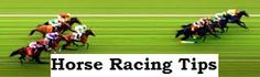 Horse racing is a very exciting sport and Americans love placing bets on all the races, which makes it even more exciting to watch. Horse racing betting tips is useful and great advantage to new bettors. Horse Racing Betting Tips, Horse Racing Tips, Sports Picks, Book Sites, Soccer Tips, Horse World, Play Soccer, Sports Betting, Arts And Entertainment
