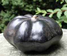 Ceramic Gourd. Large Ceramic Gourd.  Ceramic by AnythingDiscovered