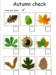 Autumn check list, ready for an Autumn walk!