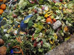 Terms of Decomposition Of Garbage In Photos