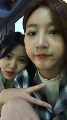 High School Love, Star Girl, Movie List, Korean Actresses, Yg Entertainment, Red Velvet, Dan, Actors, Celebrities