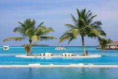 Seychelles, Paradise, Island, Google, Outdoor Decor, Home Decor, Decoration Home, Room Decor, Islands