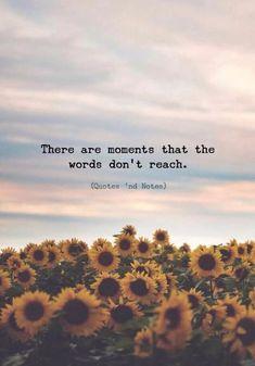 There are moments that the words don't reach. —via Hay momentos en que las palabras no alcanzan … —via Citation Pour Photo, Citation Souvenir, Sunset Quotes Instagram, Quotes On Sunset, Happy Quotes, Positive Quotes, Positive Vibes, Citation Nature, Citations Instagram