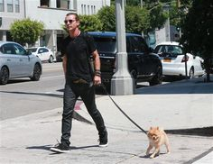 Gavin Rossdale took his dog Chewy for a walk in Los Angeles on Aug. 30, 2015.